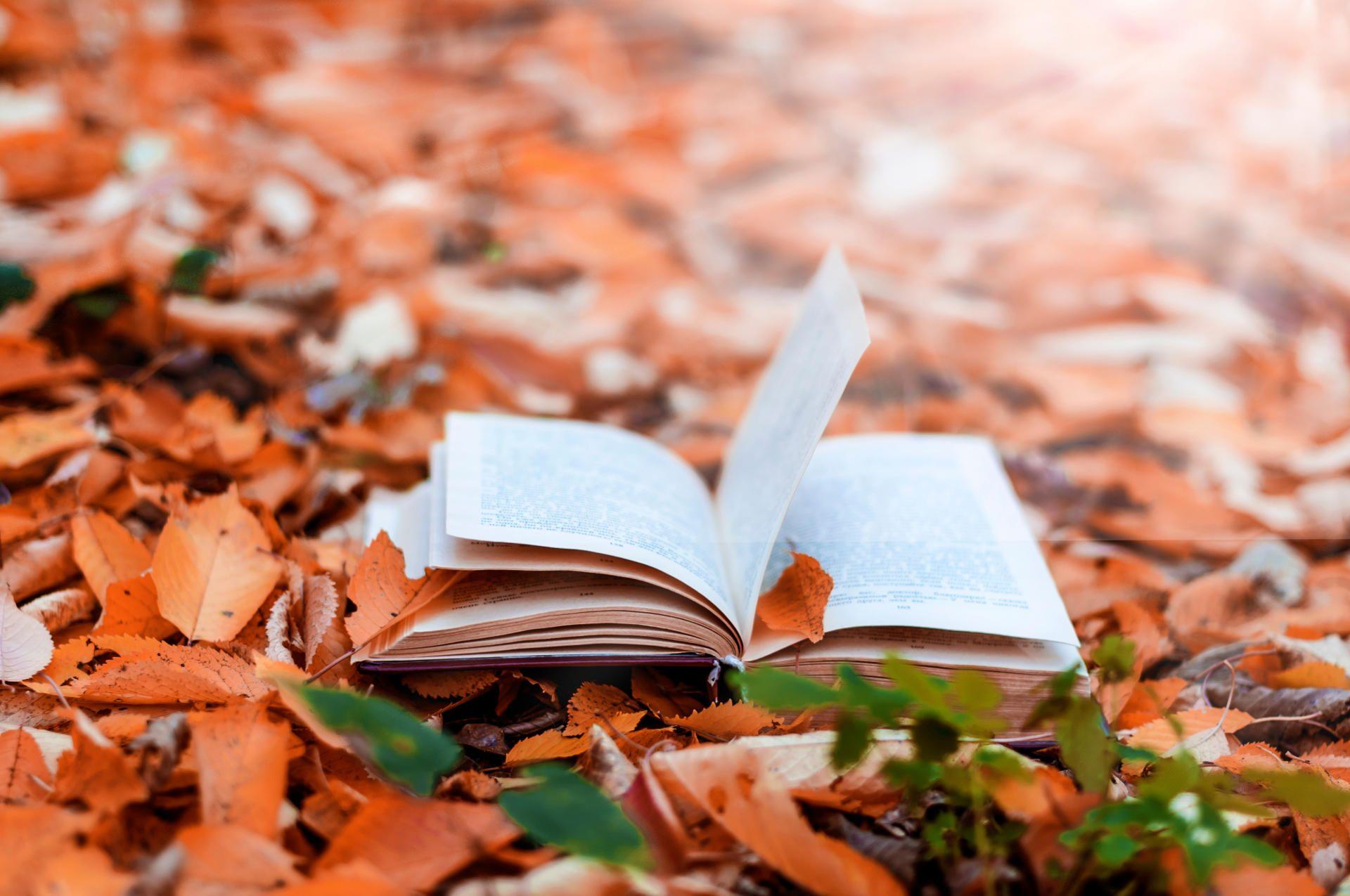 Llibre tardor